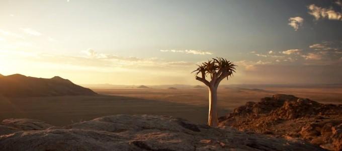 namibia-videosafari-drive